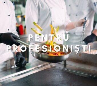 Produse profesionale